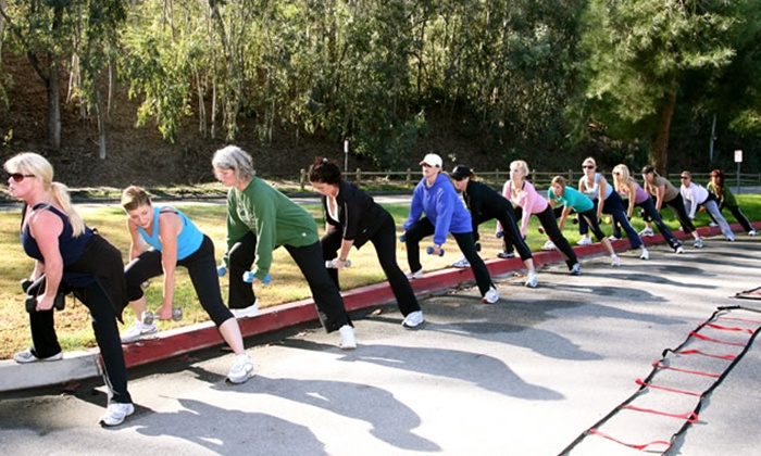 The Wellness Coach - Laguna Niguel: Two- or Four-Week Women's Fitness Boot-Camp Sessions with Nutritional Guidance from The Wellness Coach (Up to 78% Off)