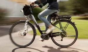 Elerent Torino: Torino - Tour guidato della città in bicicletta con itinerario storico o naturale con Elerent Torino (sconto fino a 54%)
