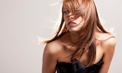 image for <strong>Haircut</strong> Package with Blow-Dry Style and Optional Partial or Full Highlights at The Hairs Inn Salon (Up to 58% Off)