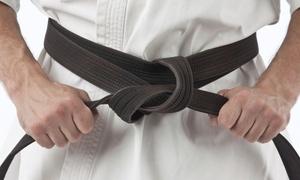 Aspire Martial Arts: 5 or 10 Combat Fitness Classes at Aspire Martial Arts (55% Off)