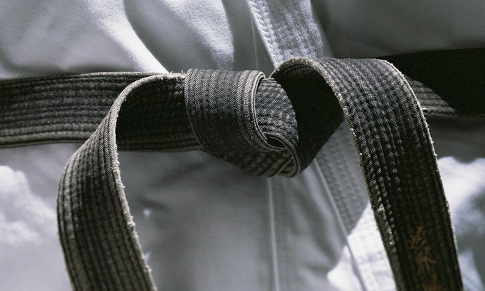 Spivey Karate/Tai Chi - Dade City: $15 for $49 Worth of Martial-Arts Lessons — Spivey Karate Dade City