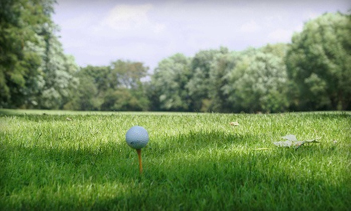 Willow Run Golf Course - New Lenox: $28 for 18 Holes of Golf with Power Cart for Two at Willow Run Golf Course ($61.50 Value)