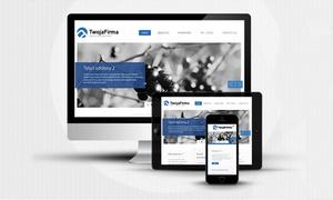 IT.P Studio Promocji Efektywnej: Tworzenie strony internetowej od 199,99 zł w IT.PStudio