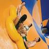 Wet'n'Wild Las Vegas – Up to 12% Off 2015 Season Pass