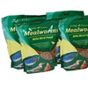 Stainless Steel Bird Feeder and 4 Dried Mealworm Pouches