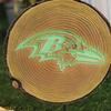 NFL Glow in the Dark Stepping Stump
