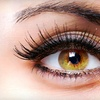 60% Off Eyelash Extensions with Touch-Up