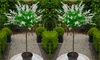 Pair of 1.2m Flamingo Topiary Trees