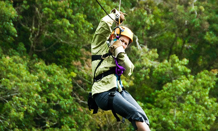 Hocking Peaks Adventure Park - Falls: Zipline Adventure Packages for One or Four at Hocking Peaks Adventure Park – Hocking Hills in Hocking Hills, Ohio (Up to 54% Off)