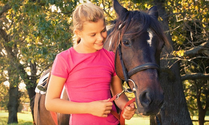 Flying Lead Change - Califon: One or Three 60-Minute Private Horseback-Riding Lessons at Flying Lead Change (Up to 65% Off)