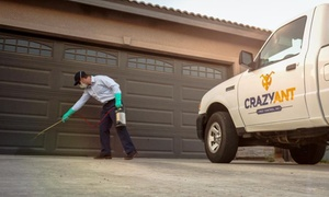 Crazy Ant Pest Control Inc: $78 for One Full Indoor/Outdoor Pest Clean-Out Service  ($159 Value) — Crazy Ant Pest Control Inc,