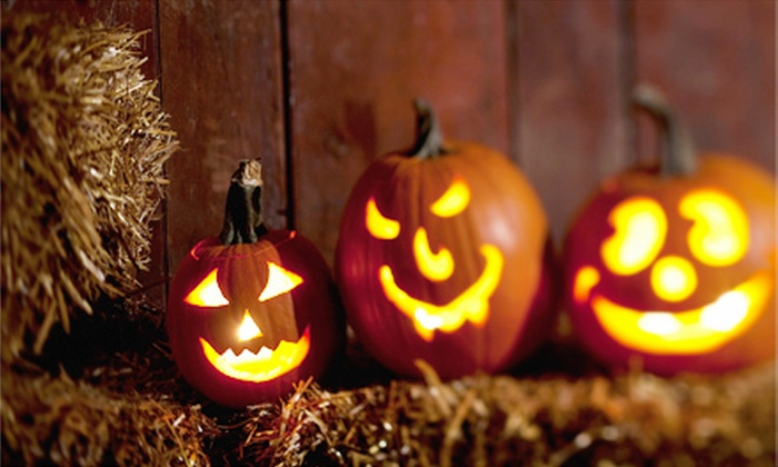 Siegel's Cottonwood Farm - Crest Hill: $45 for a Pumpkin-Fest Experience for Four with Rides and Snacks at Siegel's Cottonwood Farm (Up to $86 Total Value)