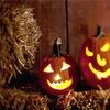 48% Off Pumpkin-Farm Activities