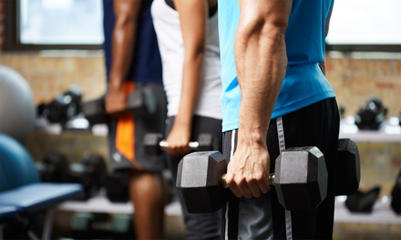 One or Three Months of Unlimited Gym Use at Premier Fitness (50% Off)