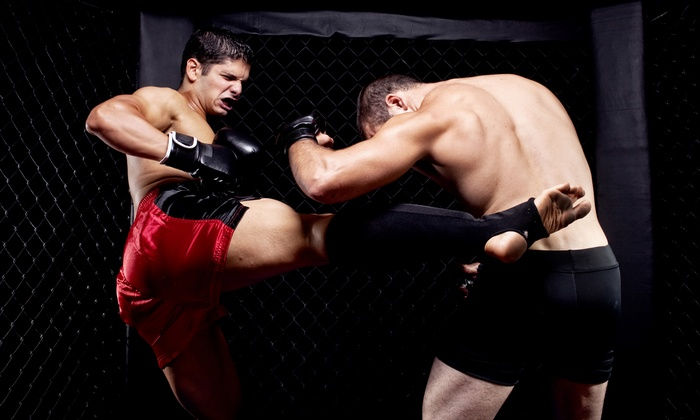 Rage In The Cage Extreme Cagefighting - Celebrity Theatre: $20 for Rage in the Cage Extreme Cagefighting at Celebrity Theatre on Saturday, February 1 (Up to $47.75 Value)