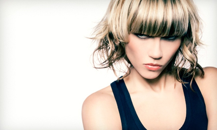 Karon Carlisle - Corpus Christi: One or Two Full-Highlight Packages with Haircuts and Conditioning Gloss Treatments from Karon Carlisle (Up to 67% Off)