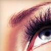 Up to 56% Off Brow or Lash Services