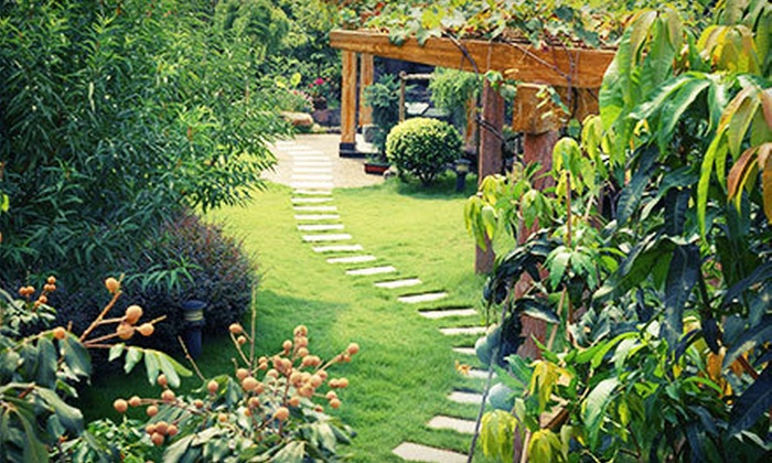 Sticks stones landscaping in groupon for Sticks and stones landscaping