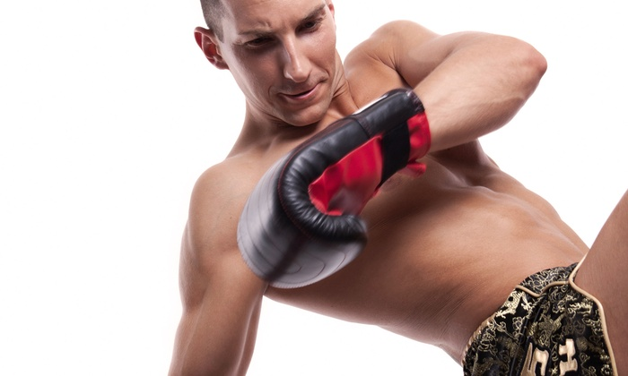 Tech MMA & Fitness Academy - B-01: $30 for a One-Hour Personal Training Session at Tech MMA & Fitness Academy