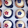 Up to 52% Off Cupcakes in Vacaville