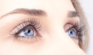 The Lashing: Full Set of Eyelash Extensions with Optional Fill-In Treatment at The Lashing (Up to 56% Off)