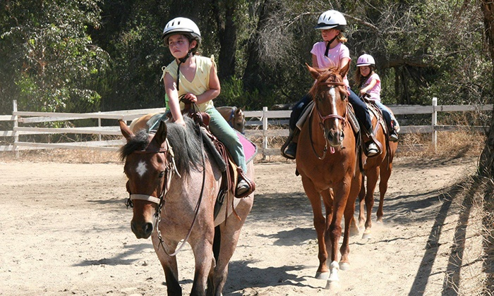 Double M Horsemanship - Jamul: 2-Hour Group Horseback-Riding Lesson or Two or Four 1.5-Hour Private Lessons at Double M Horsemanship (Up to 53% Off)