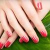 58% Off Shellac Manicure in Live Oak