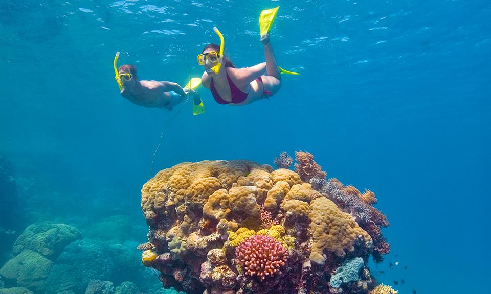 Cairns: 4.5-Star Stay + Flights 3