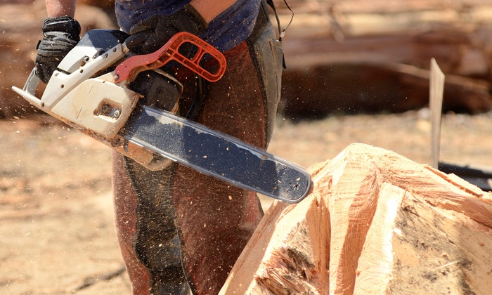 Nuts and Bolts Hardware - Arlington: $4 for up to $10 Worth of Chain Saw Chain Sharpening at Nuts and Bolts Hardware