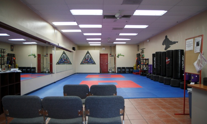 Akka Karate Usa- Thornydale - Thornydale Acres: $63 for $139 Worth of Martial-Arts Lessons — Akka Karate Usa
