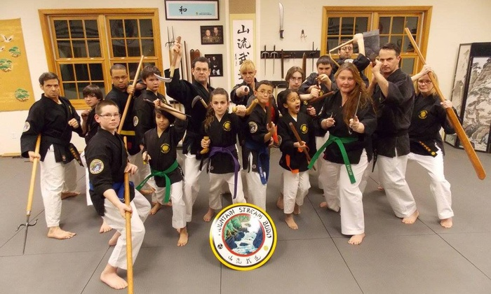 Mountain Stream Budo - Putnam Valley: $50 for $135 Worth of Martial-Arts Lessons — Mountain Stream Budo