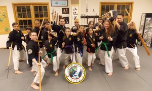 Mountain Stream Budo: $50 for $135 Worth of Martial-Arts Lessons — Mountain Stream Budo