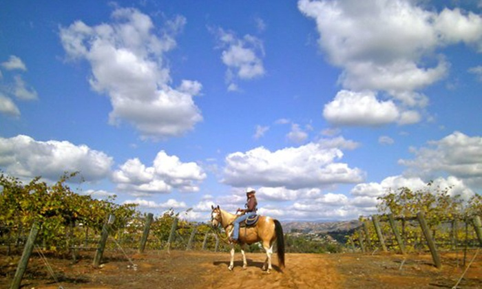 Vineyard Trail Rides - Milagro Farm Vineyard and Winery: Wine Tasting and 90-Minute Horseback Ride Through Vineyard for One or Two from Vineyard Trail Rides (Up to 57% Off)