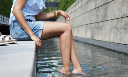 One or Two Half-Spider-Vein Sclerotherapy Treatments at The Vein Doctor (Up to 53% Off)