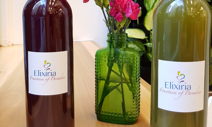 Elixiria - Elixiria: One-Day Juice Cleanse or Three Groupons, Each Good for Three Pressed Juices at Elixiria (Up to 22% Off)
