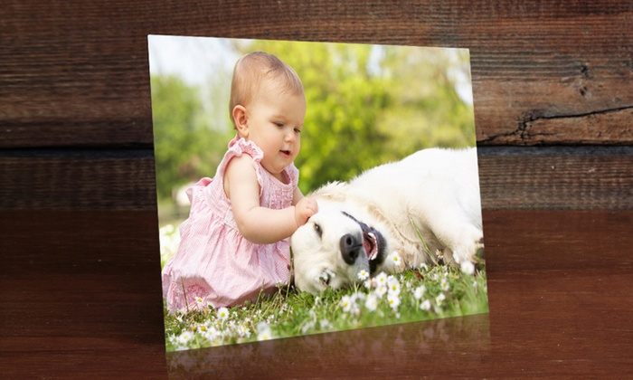 "ImageCom.com: $5 for an 8""x10"" Photo on Metal Print from ImageCom.com ($69.95 Value)"