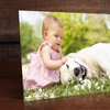 $5 for Metal Print from ImageCom.com