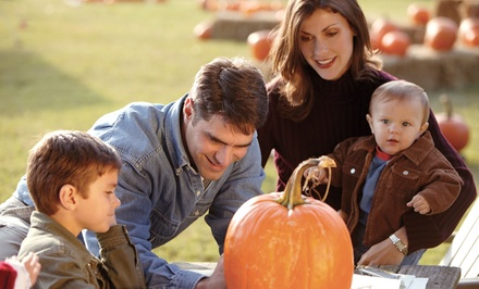 $12 for $20 Worth of Tickets for Fall Activities at Lockwood Park Trailside Equestrian Centre