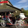 Up to 59% Off a Horse-Drawn Sleigh Ride