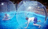 Amaze'n Steamboat Family Fun Park - Buckhorn Valley: Day Passes for Two, Four, or Six at Amaze'n Steamboat Family Fun Park (Up to 57% Off)