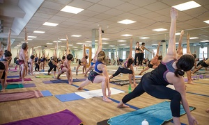 Yoga in the Lanes: 10 Hot Yoga Classes at Yoga in the Lanes (77% Off)