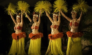 Diamond Head Luau: Diamond Head Luau Show Only and Aquarium Package or VIP Luau with Table Service for Two (Up to 46% Off)