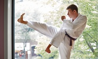 Eight Adult Karate Lessons for One or Two at Jon Jepson JJBBA