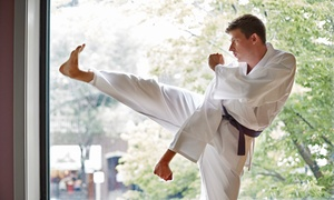 Myers Martial Arts: Martial-Arts Class Packages at Myers Martial Arts (Up to 51% Off). Two Options Available.