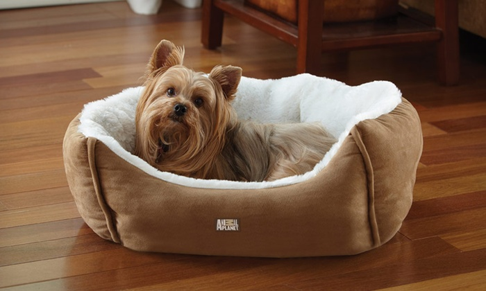 Animal Planet Ultra Suede Pet Bed: Animal Planet Ultra Suede Pet Bed. Three Colors Available. Free Returns.