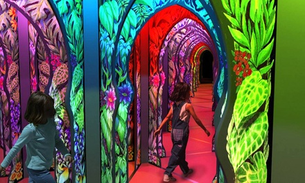 Mirror Maze Visit for Two, Four, or Six, or a Party for Up to 15 Kids at  OdySea Mirror Maze (Up to 48% Off)