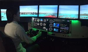 Wayman Flight Training: 30- or 60-Minute Flight Simulator Lessons with Log Book at Wayman Flight Training (Up to 47% Off)