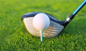 Americas Golf Coach: One or Two Private 60-Minute Golf Lessons with Club Fitting from America's Golf Coach (Up to 67% Off)
