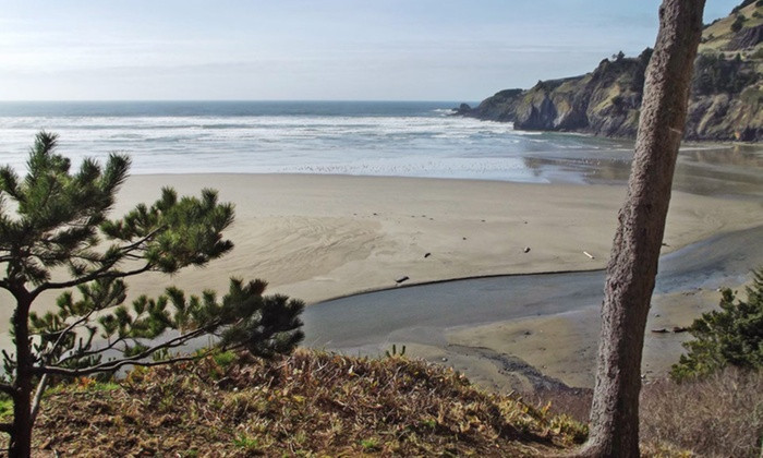 Starfish Point - Newport, OR: 1- or 2-Night Stay for Two in a Two-Bedroom Oceanfront Luxury Condo at Starfish Point in Newport, OR