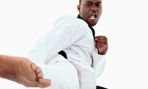 Action Karate: 10 or 20 Group Fitness Classes at Action Karate (Up to 88% Off)